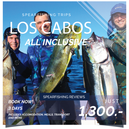 spearfishing reviews, trips, spearfishing caribbean